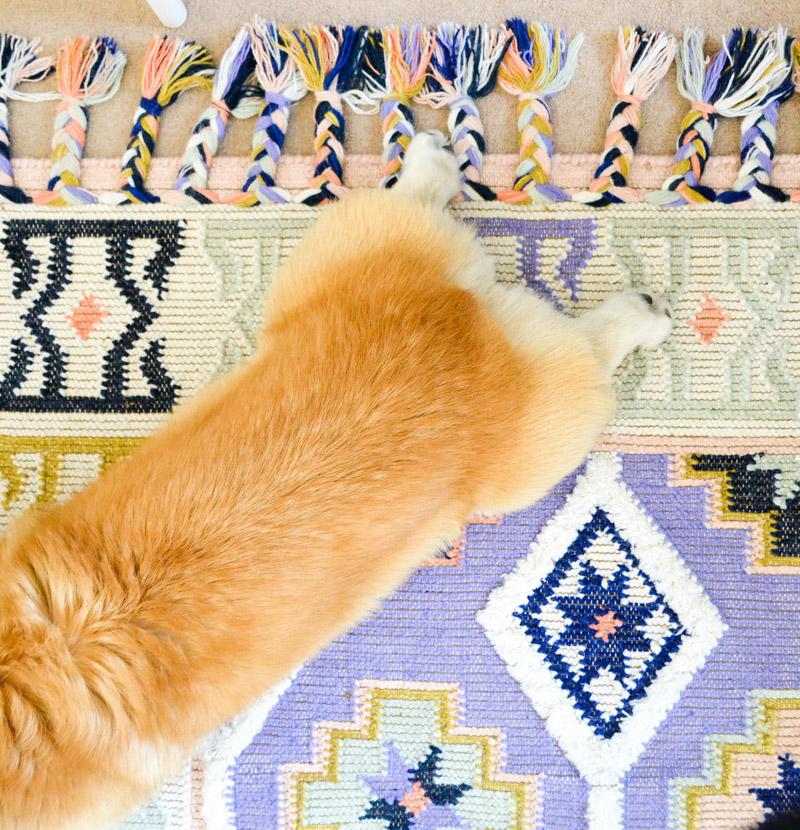 Global boho kids bedroom makeover - Anthropologie Caravan rug + corgi butt